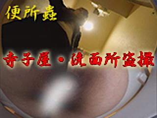 巨乳おまんこ:寺子屋・洗面所盗SATU:おまんこパイパン