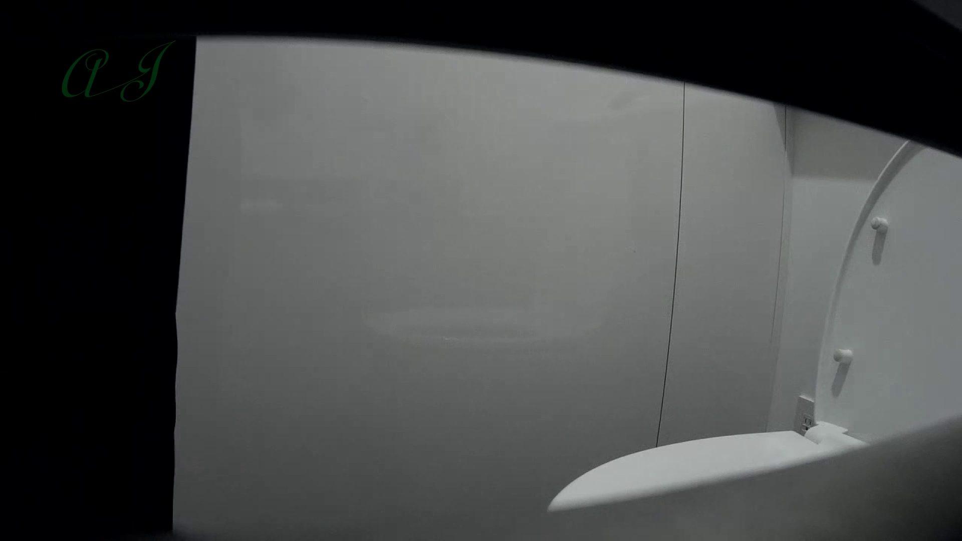 巨乳おまんこ:【17位 2016】有名大学女性洗面所 vol.60:怪盗ジョーカー