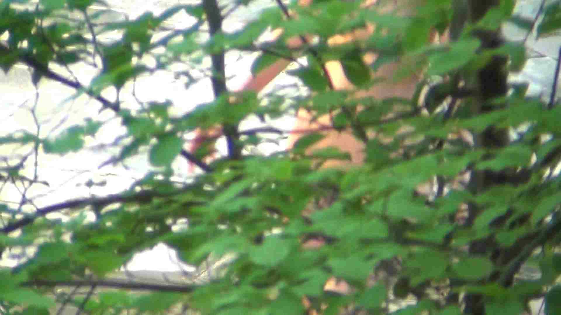 巨乳おまんこ:ハイビジョンVol.6 白い素肌にピンクのほっぺ:怪盗ジョーカー