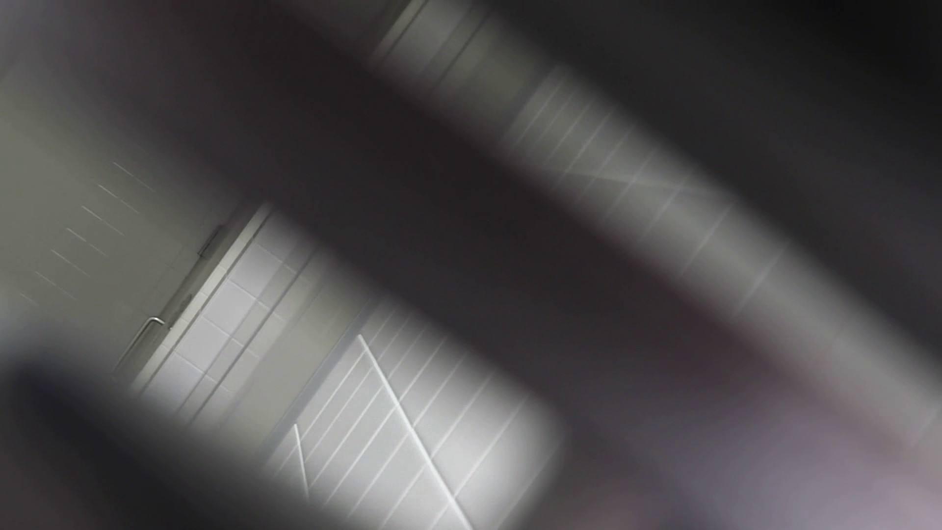 巨乳おまんこ:お銀さんの「洗面所突入レポート!!」 vol.30 粒ぞろい:怪盗ジョーカー