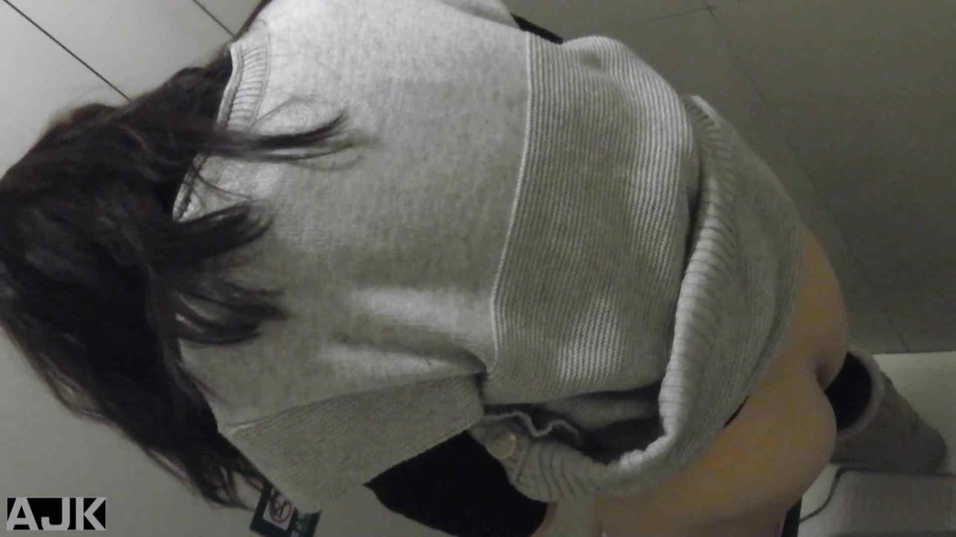 神降臨!史上最強の潜入かわや! vol.09 美女まとめ 盗撮動画紹介 94PIX 34