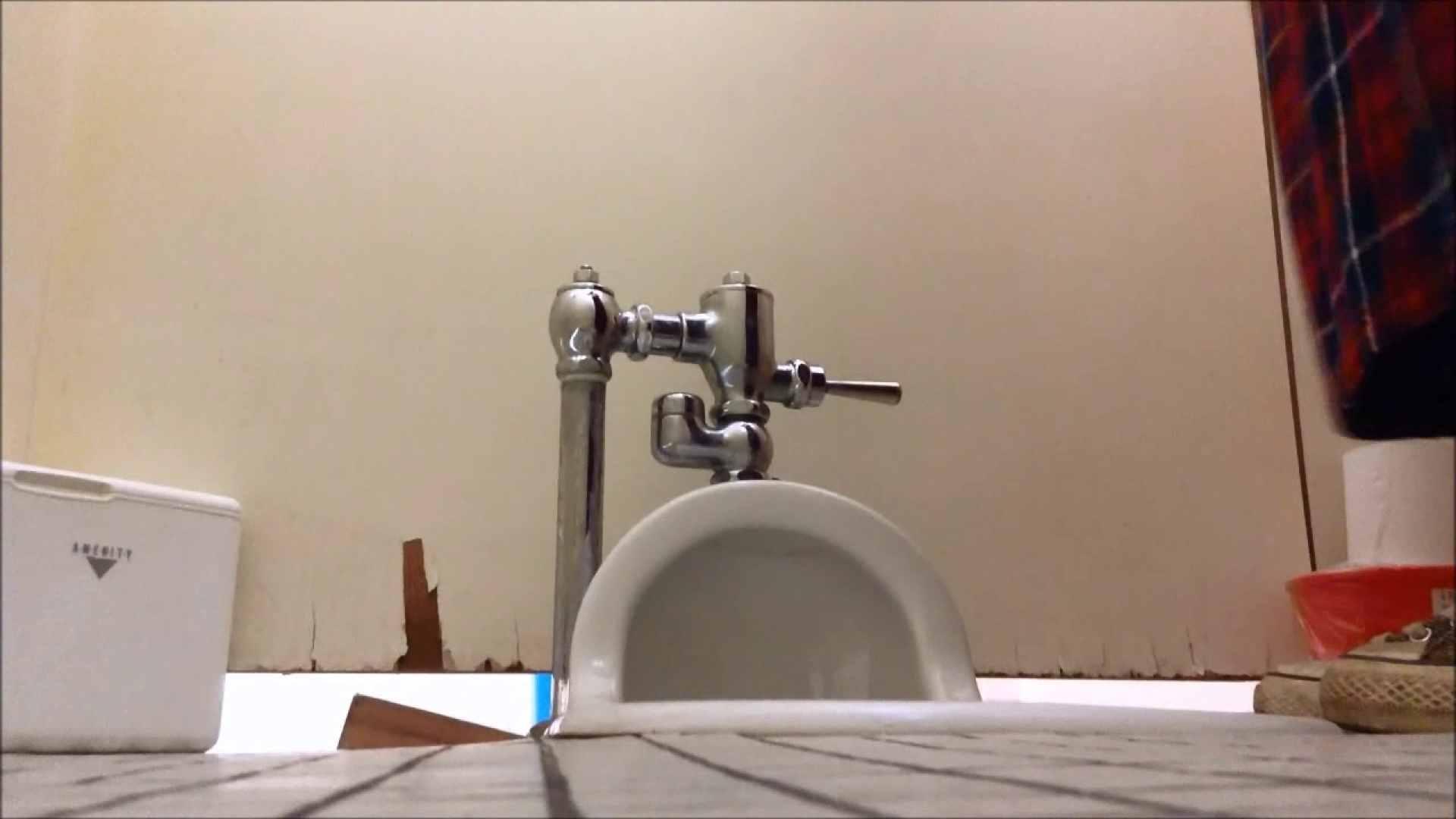 某有名大学女性洗面所 vol.05 和式 おめこ無修正動画無料 113PIX 26