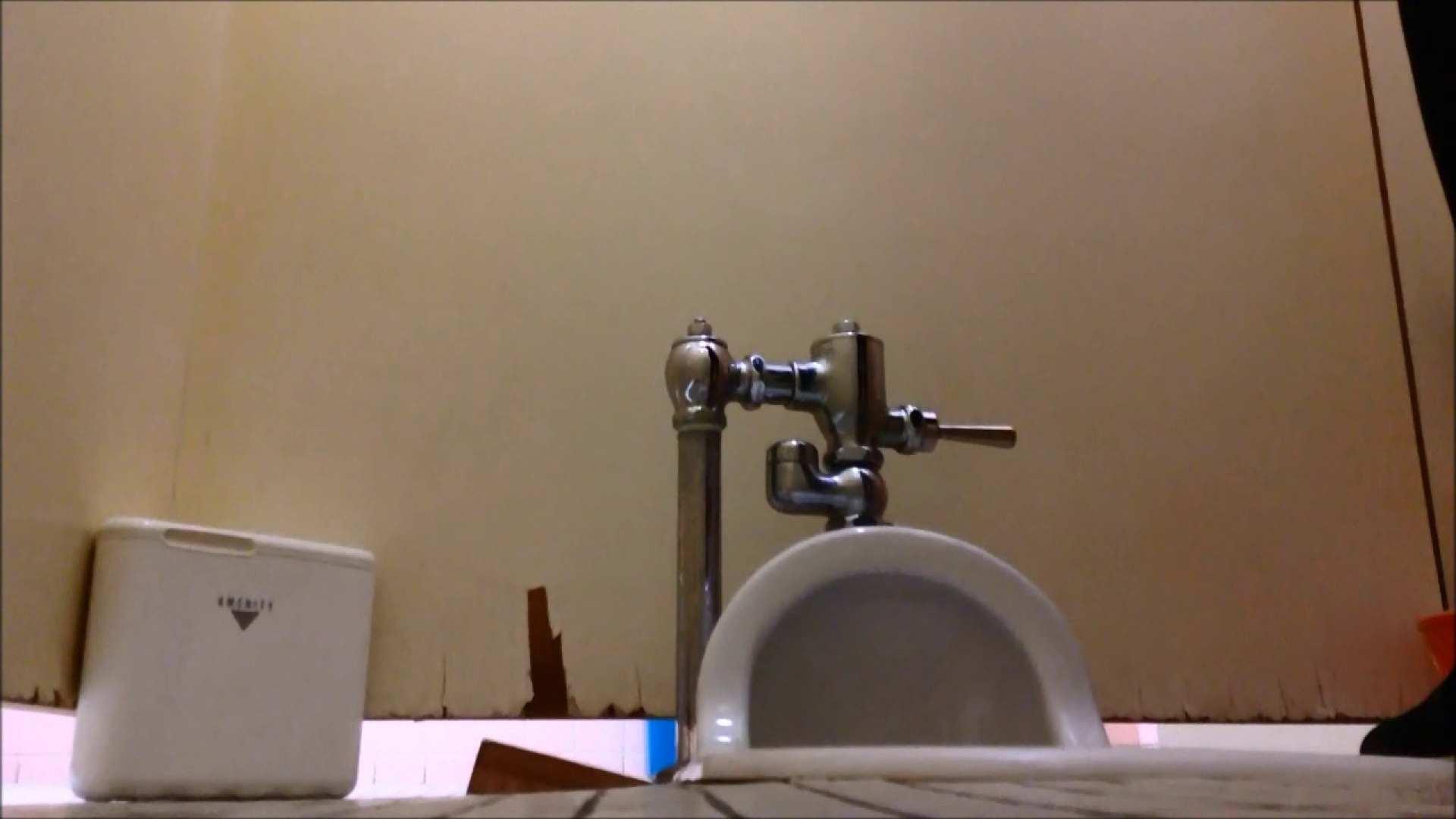 某有名大学女性洗面所 vol.05 和式 おめこ無修正動画無料 113PIX 83
