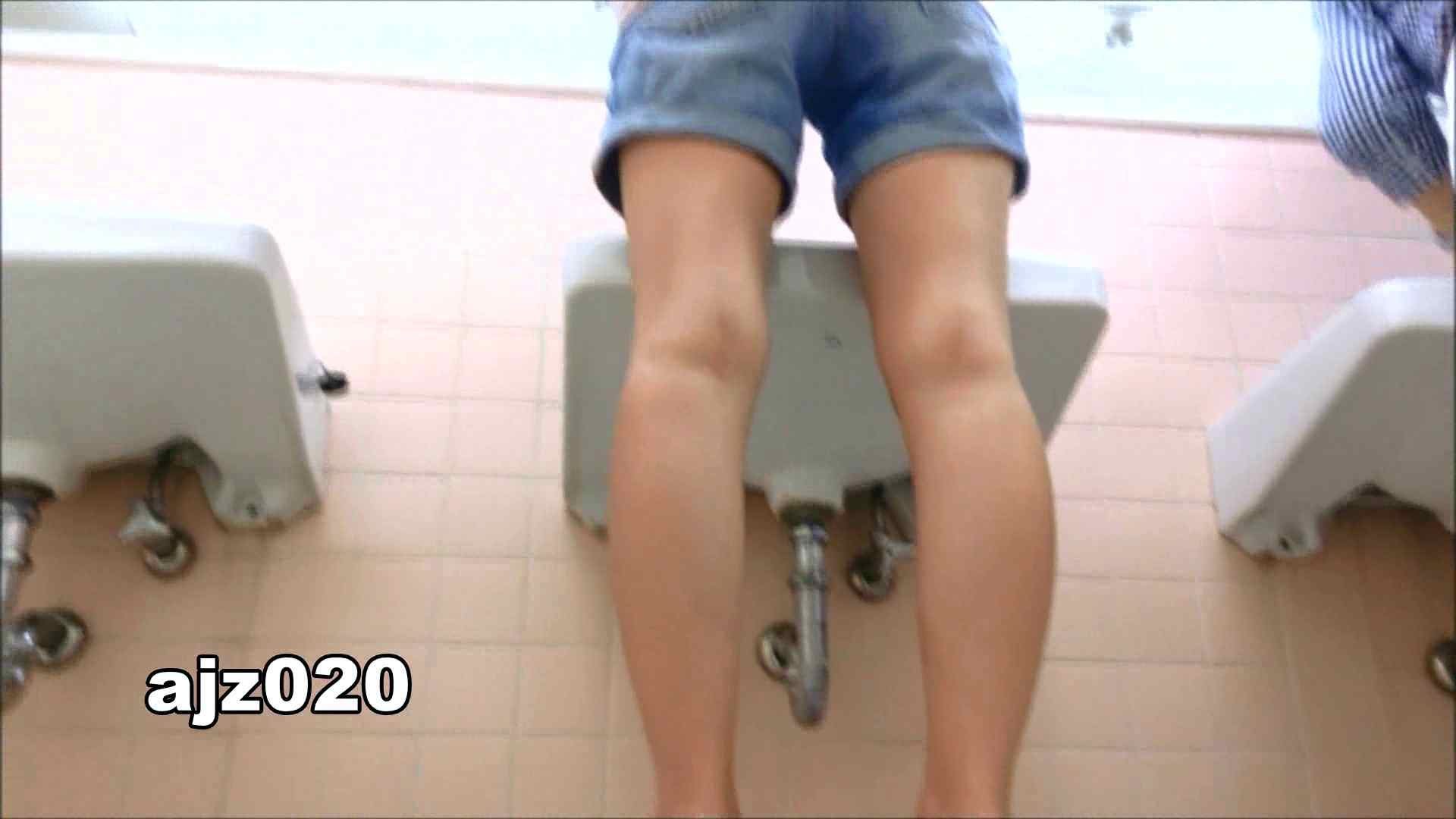 某有名大学女性洗面所 vol.20 潜入 | 洗面所編  100PIX 82