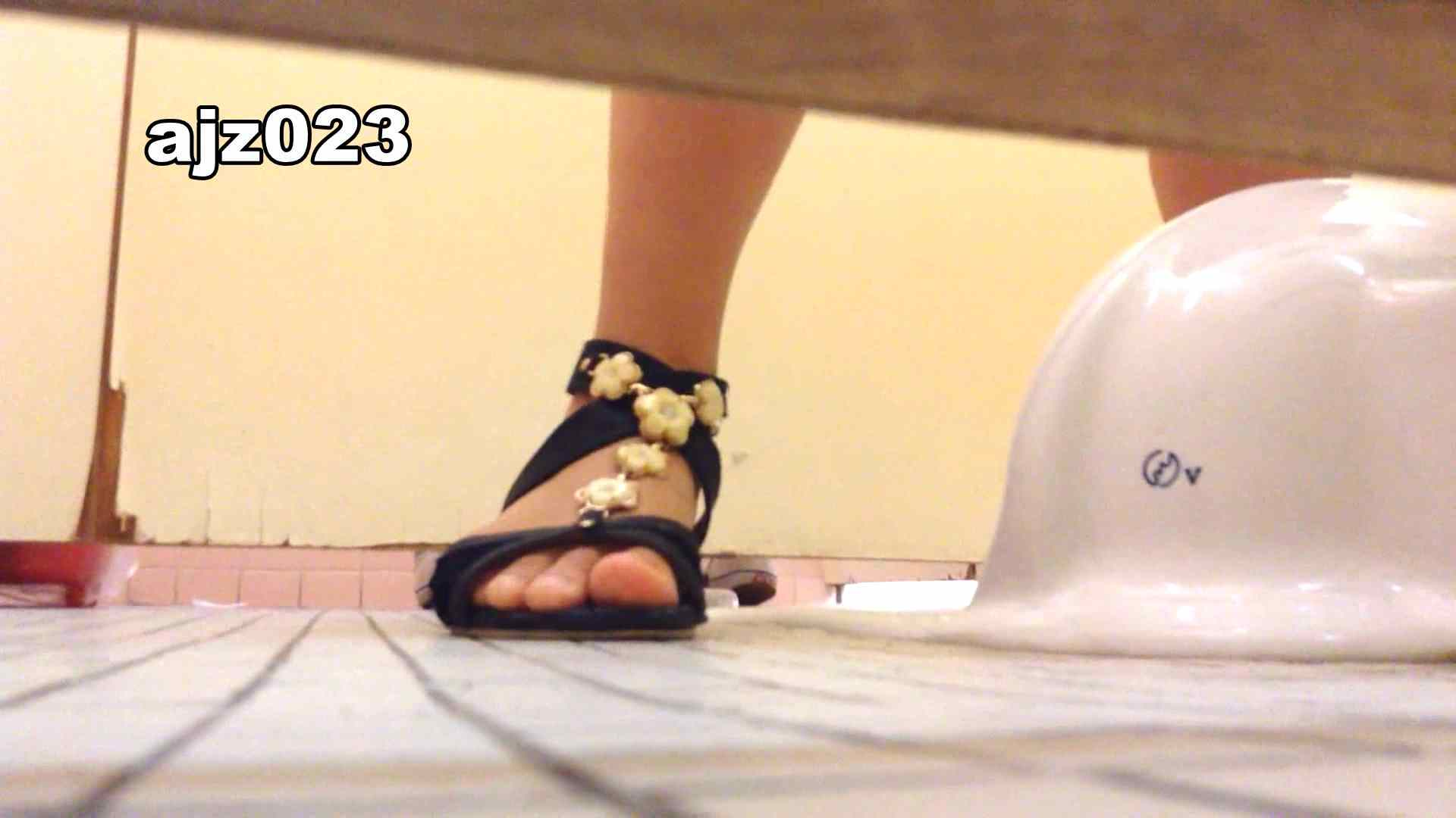某有名大学女性洗面所 vol.23 潜入 | 和式  95PIX 55