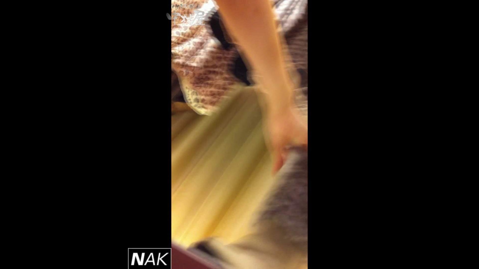 ハイビジョン盗撮!ショップ店員千人斬り!パンチラ編 vol.05 パンチラ われめAV動画紹介 83PIX 48