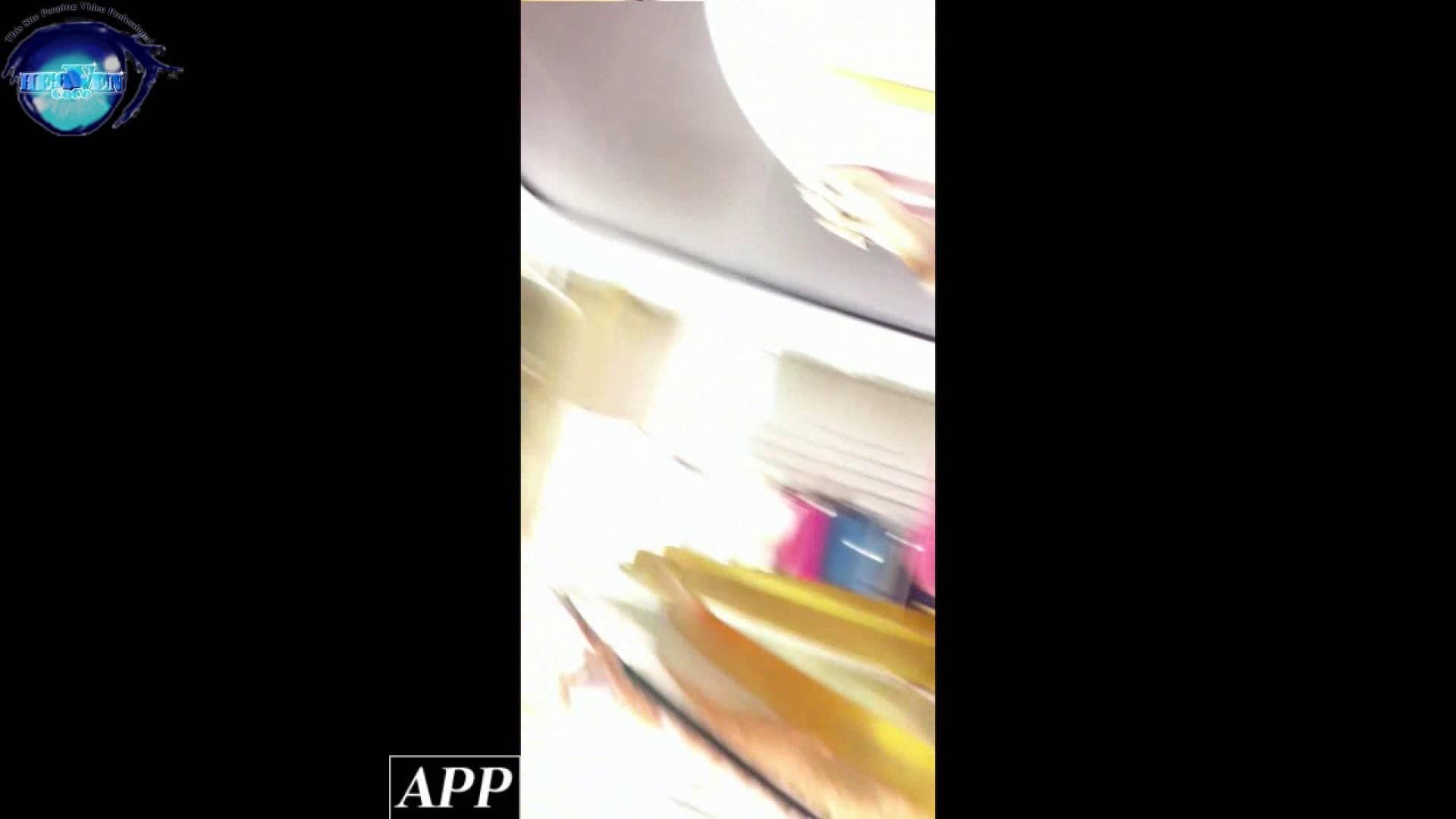 ハイビジョン盗撮!ショップ店員千人斬り!胸チラ編 vol.56 胸チラ スケベ動画紹介 106PIX 49