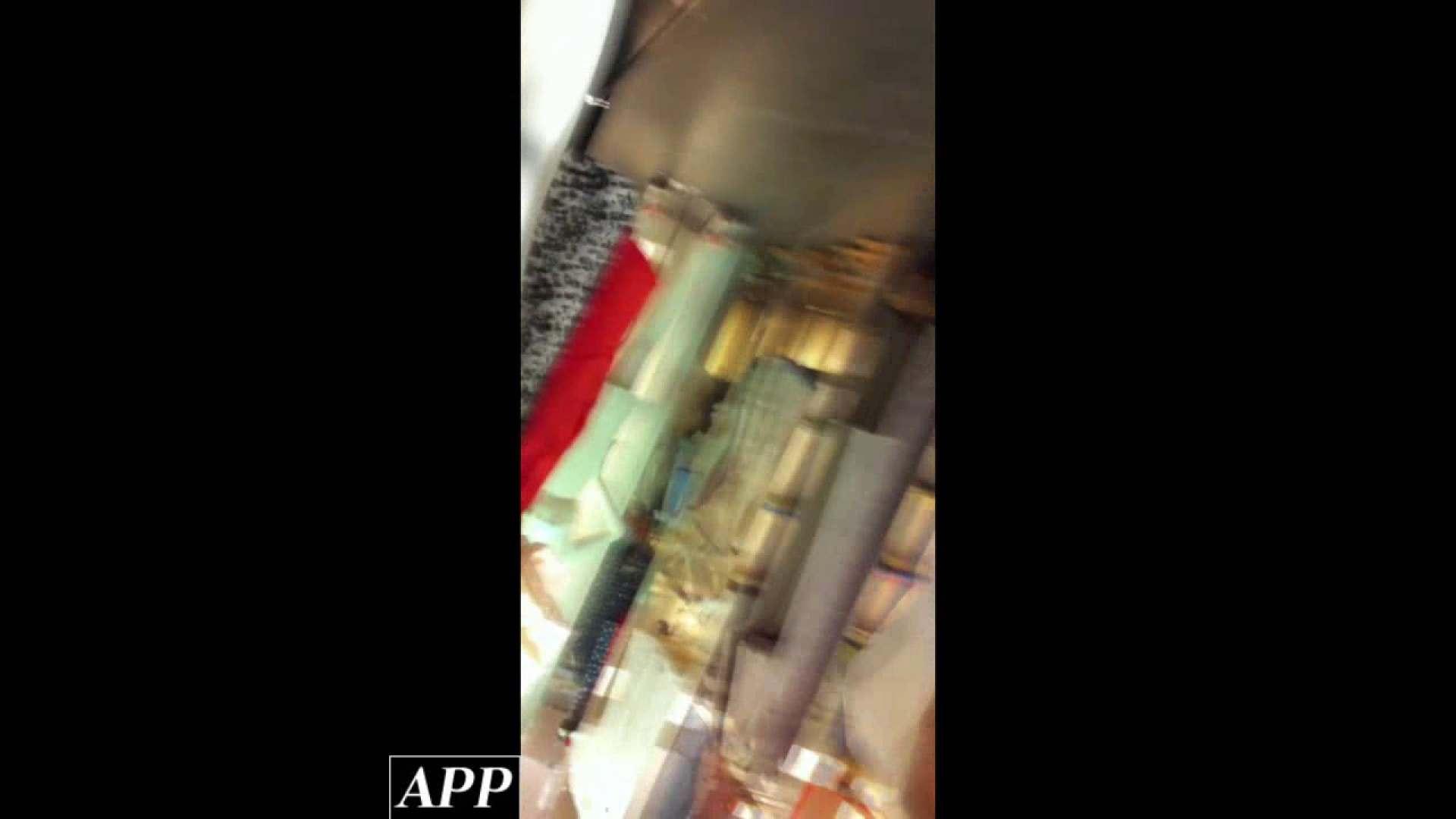 ハイビジョン盗撮!ショップ店員千人斬り!胸チラ編 vol.81 盗撮シリーズ ヌード画像 103PIX 67