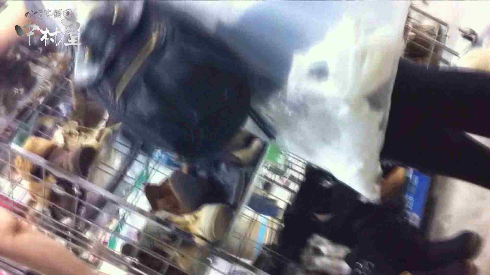 vol.45 可愛いカリスマ店員限定‼胸チラ&パンチラ 食い込みミッキーマウス! チラ オメコ無修正動画無料 107PIX 30