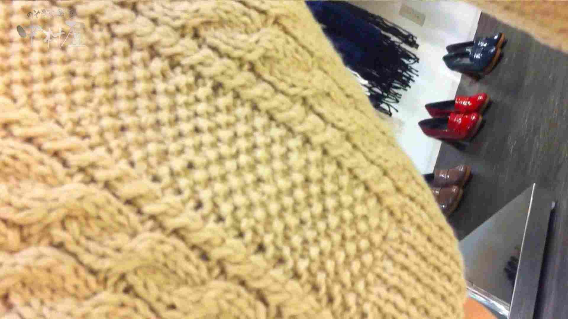 vol.75 美人アパレル胸チラ&パンチラ きれいな髪のおねーさんはド派手パンツ 接写  83PIX 76