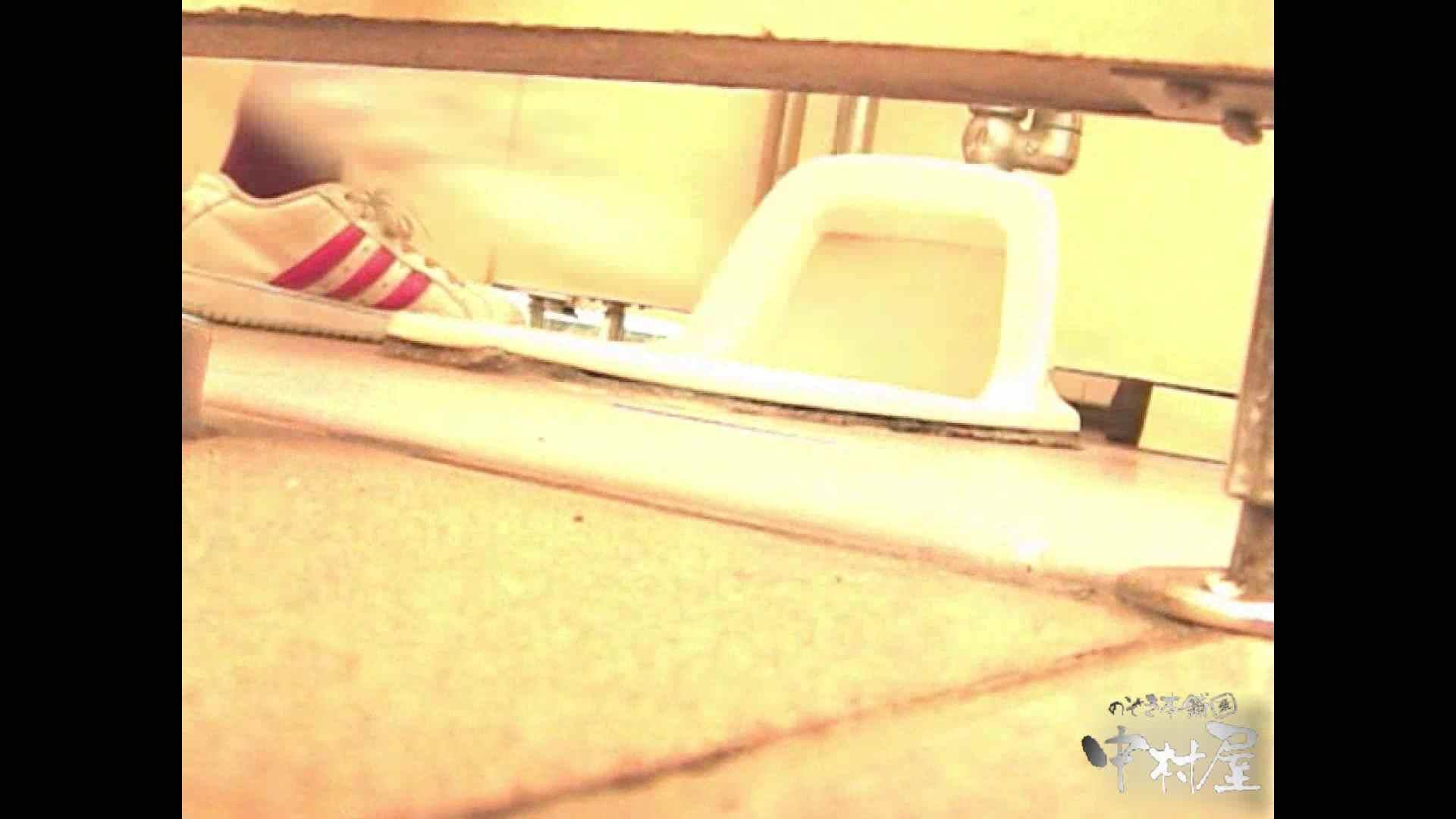 岩手県在住盗撮師盗撮記録vol.02 排泄編 オマンコ動画キャプチャ 108PIX 27
