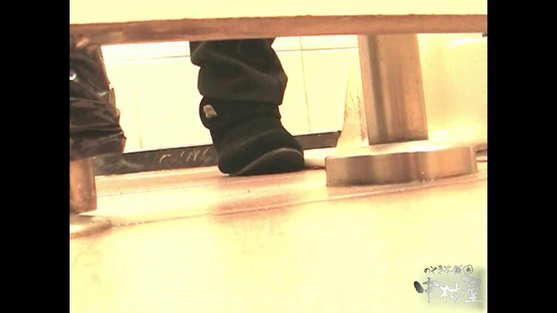 岩手県在住盗撮師盗撮記録vol.02 排泄編 オマンコ動画キャプチャ 108PIX 34