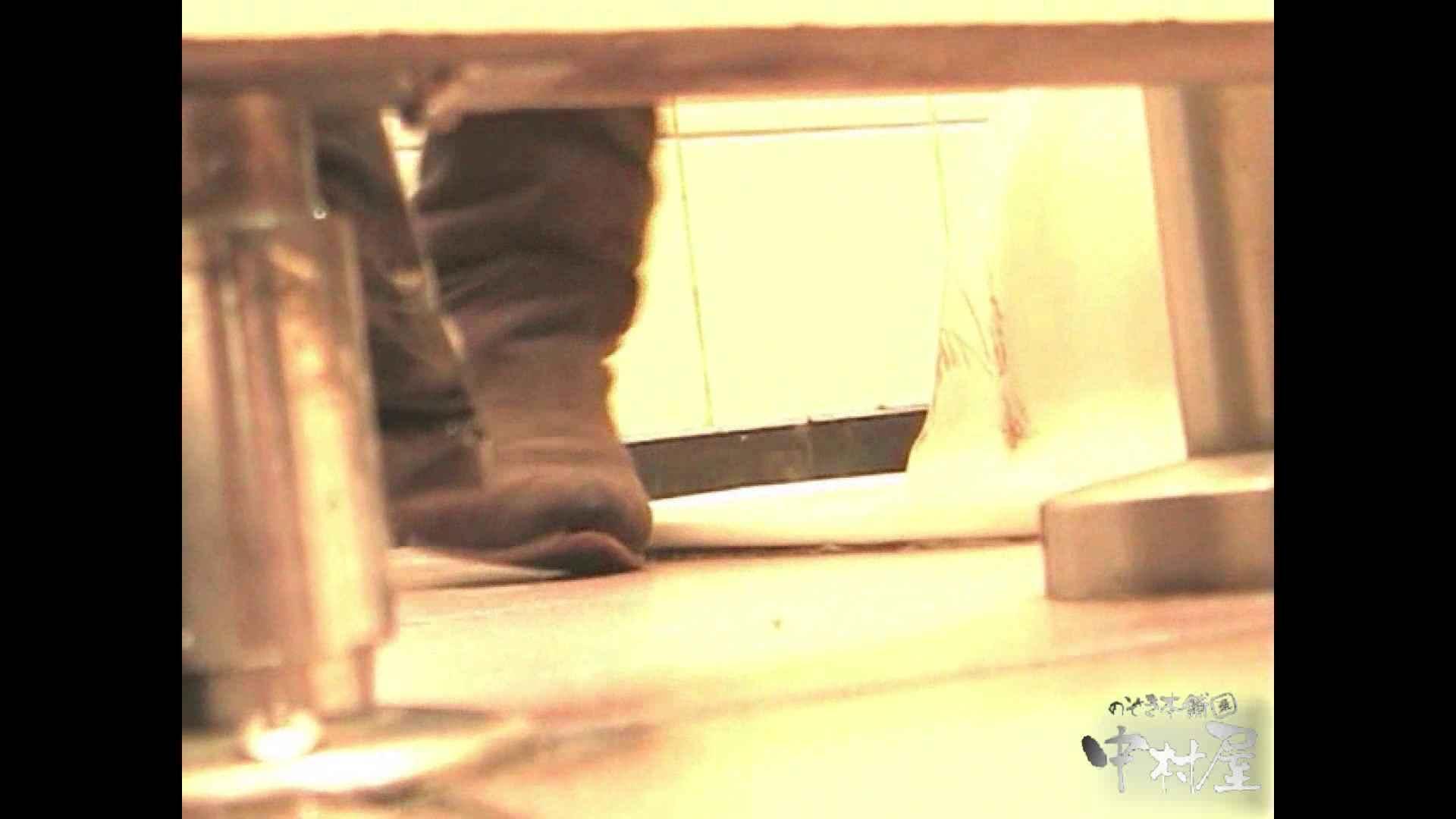 岩手県在住盗撮師盗撮記録vol.02 排泄編 オマンコ動画キャプチャ 108PIX 76
