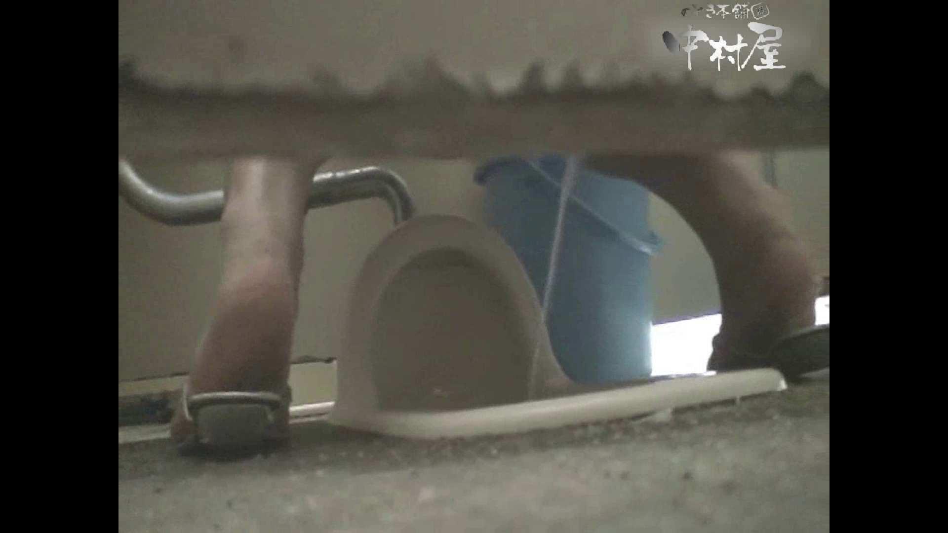 岩手県在住盗撮師盗撮記録vol.19 お姉さんのエロ動画 おまんこ動画流出 105PIX 43