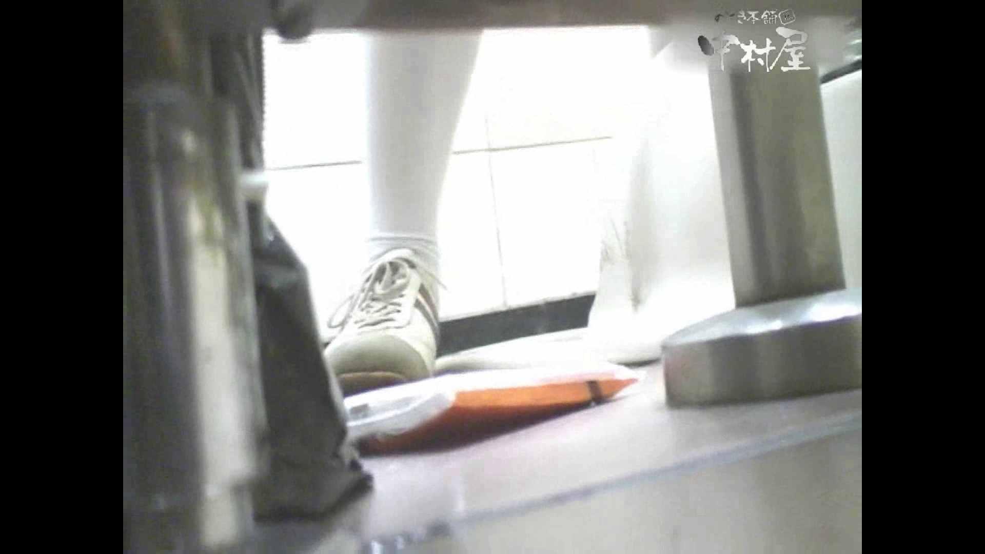 岩手県在住盗撮師盗撮記録vol.29 ハプニング映像  103PIX 10