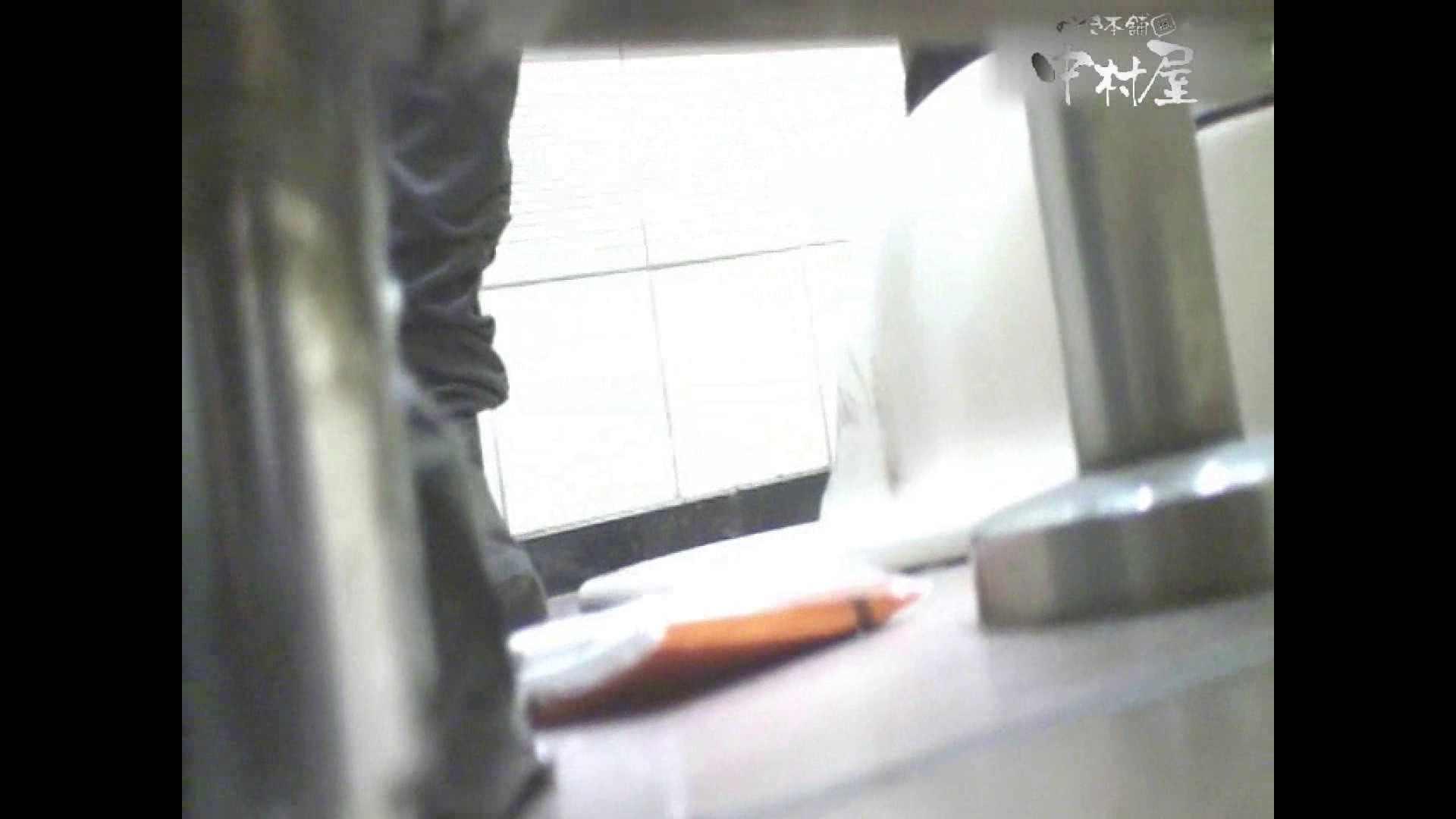 岩手県在住盗撮師盗撮記録vol.29 ハプニング映像   お姉さんのエロ動画  103PIX 86