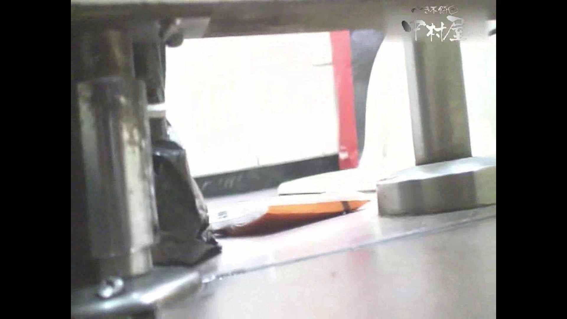 岩手県在住盗撮師盗撮記録vol.29 オマンコもろ オメコ動画キャプチャ 103PIX 99