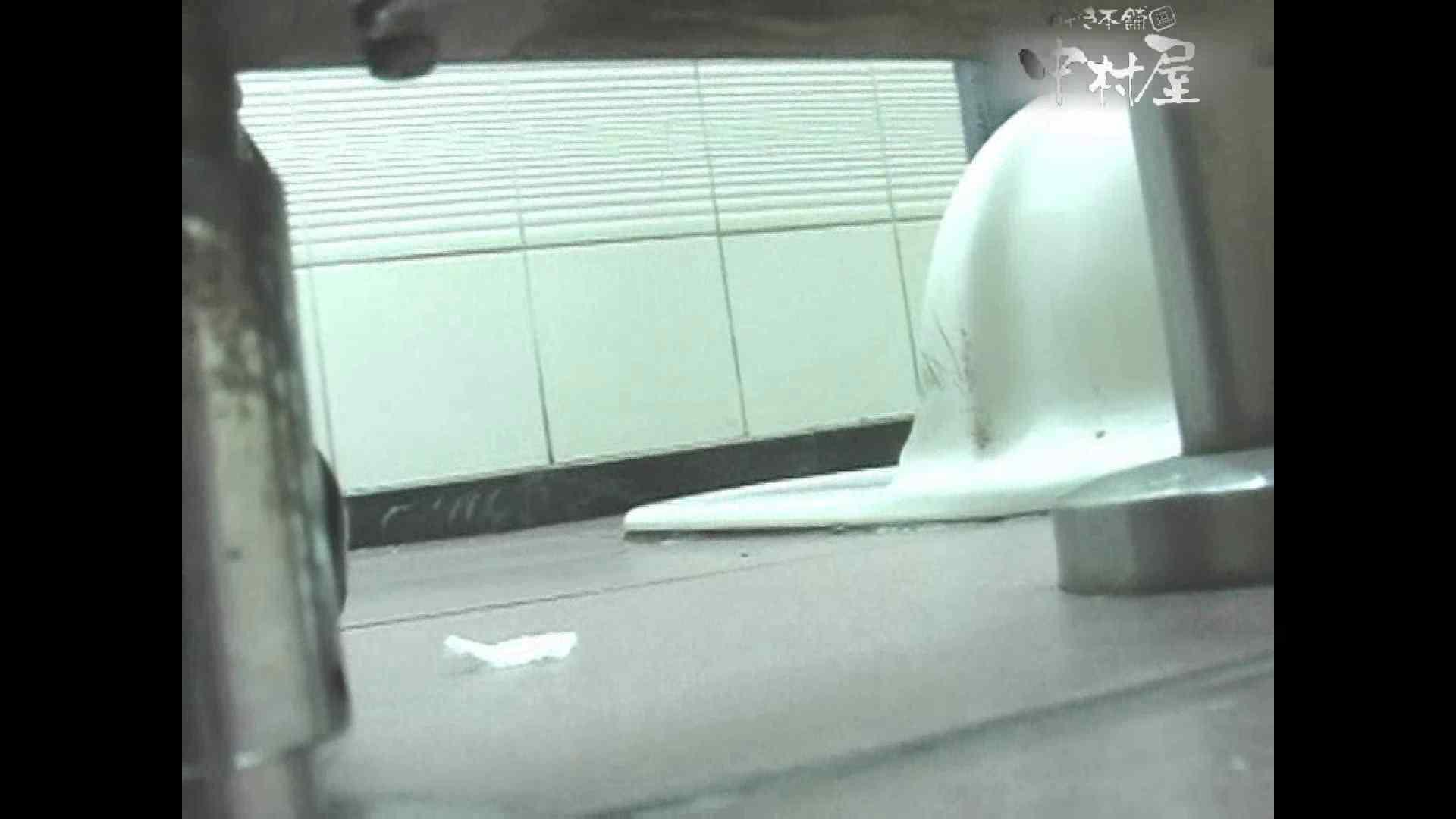 岩手県在住盗撮師盗撮記録vol.39 排泄編 濡れ場動画紹介 88PIX 7