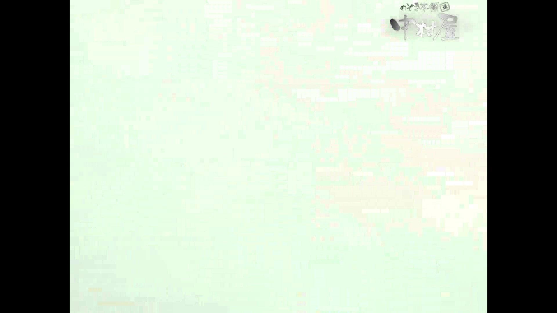 岩手県在住盗撮師盗撮記録vol.40 排泄編  87PIX 48