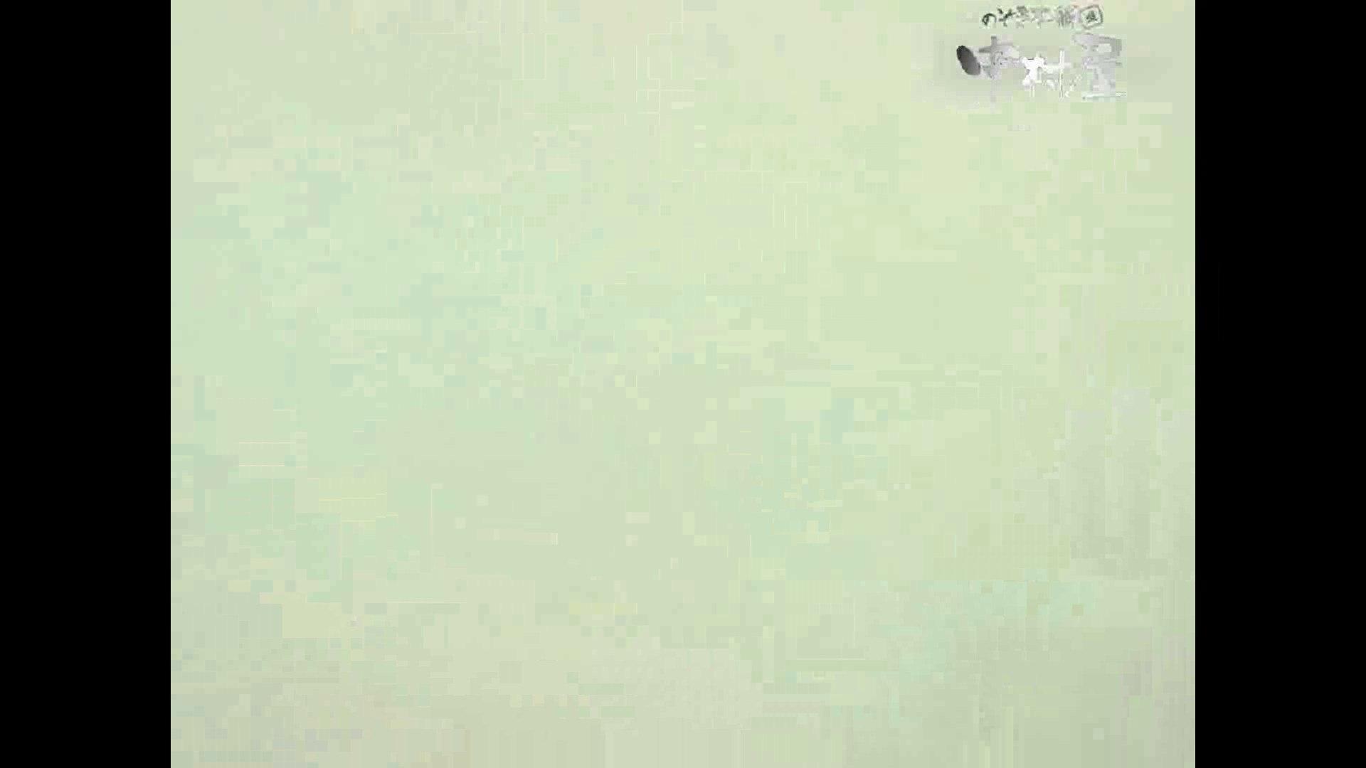 岩手県在住盗撮師盗撮記録vol.40 排泄編  87PIX 60