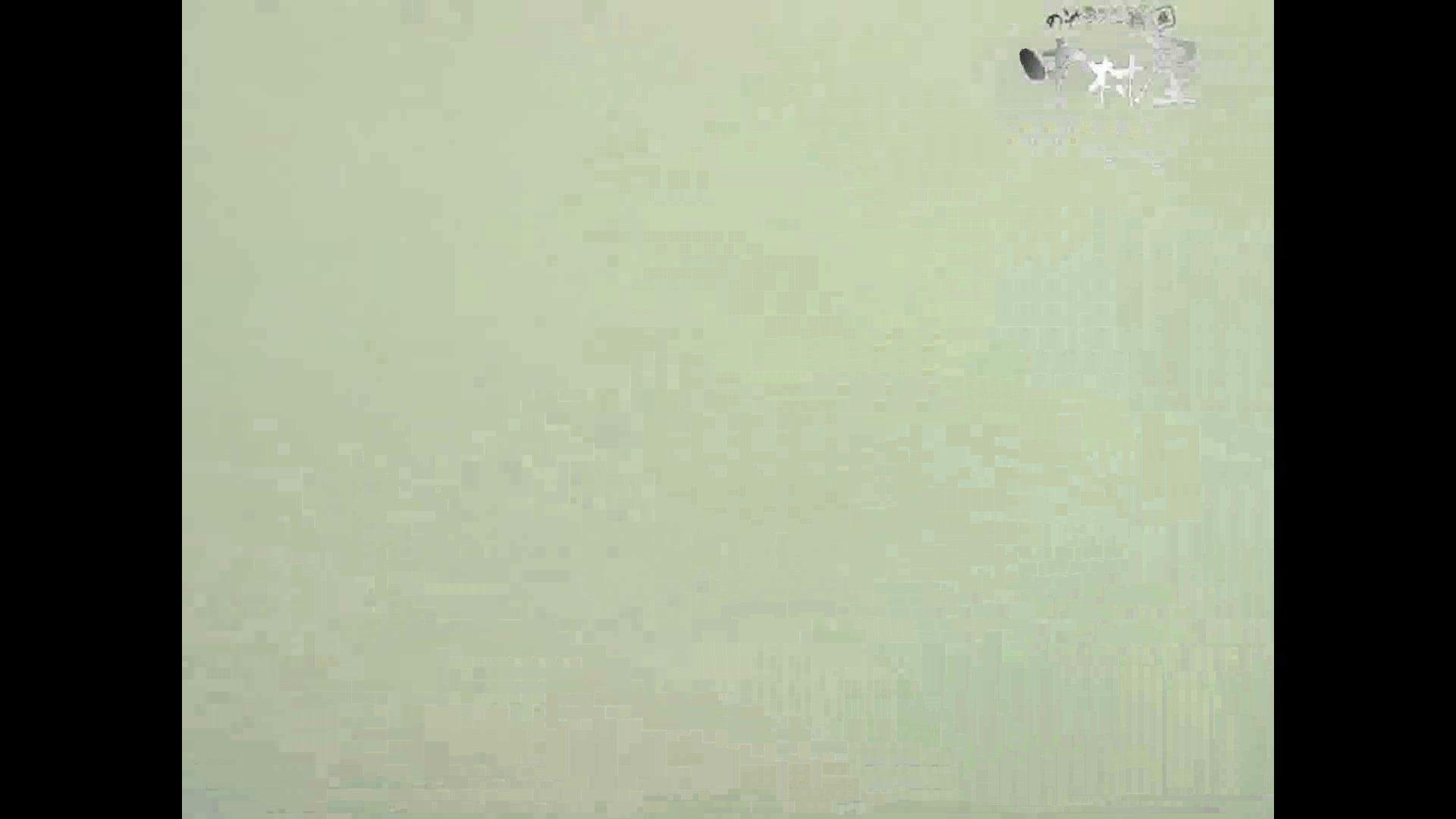 岩手県在住盗撮師盗撮記録vol.41 排泄編 | 盗撮シリーズ  89PIX 85