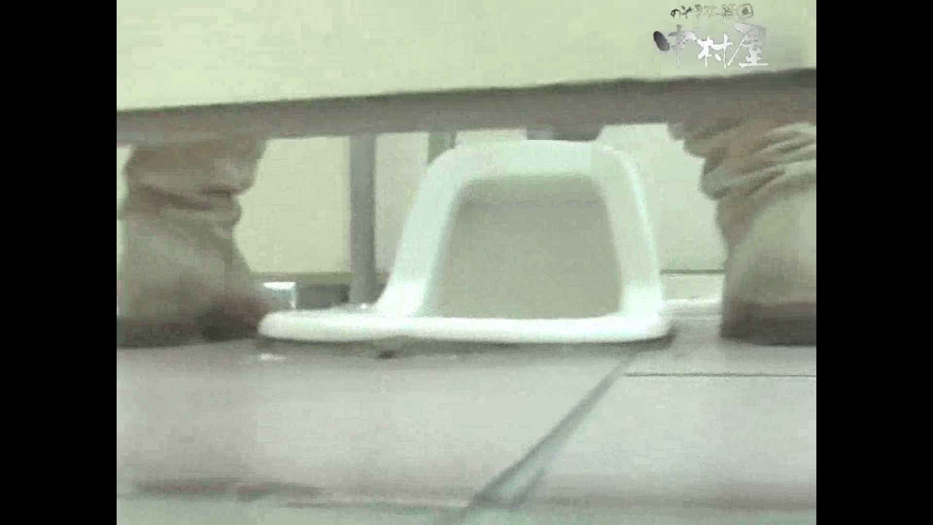岩手県在住盗撮師盗撮記録vol.38 厠・・・ 盗撮動画紹介 105PIX 2