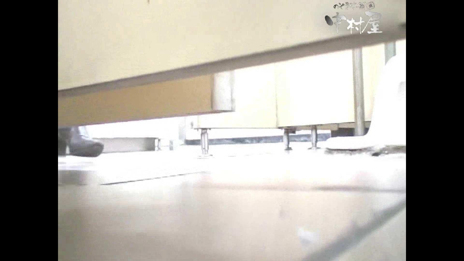 岩手県在住盗撮師盗撮記録vol.38 厠・・・ 盗撮動画紹介 105PIX 14