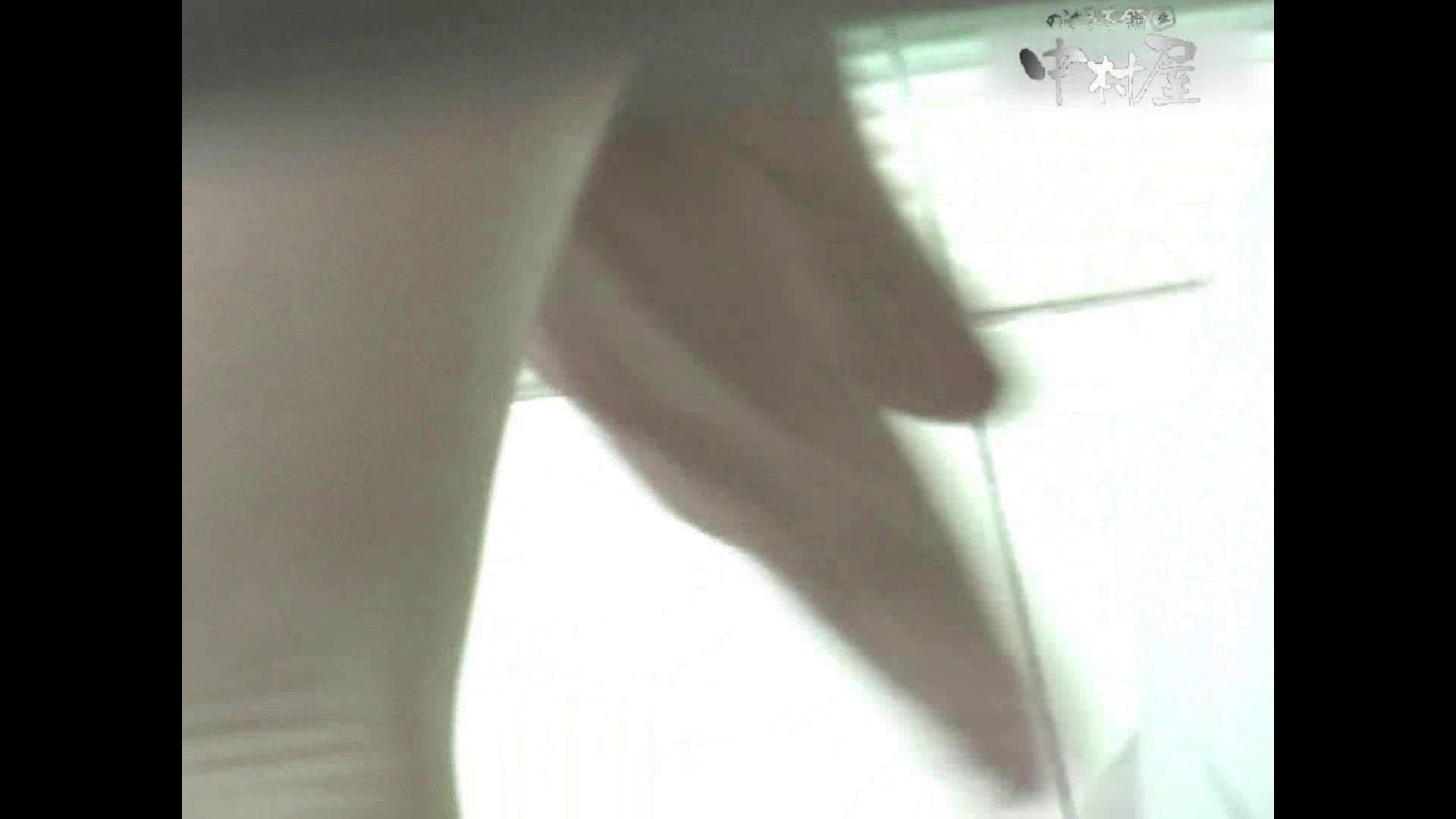 岩手県在住盗撮師盗撮記録vol.38 厠・・・ 盗撮動画紹介 105PIX 62