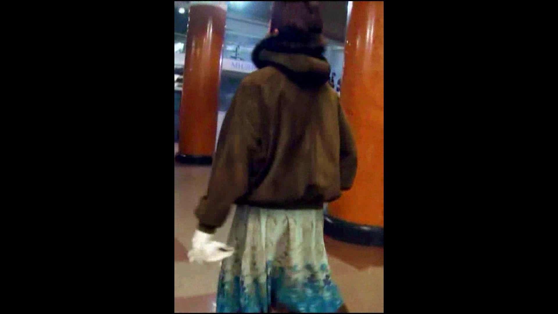 綺麗なモデルさんのスカート捲っちゃおう‼vol05 お姉さんのエロ動画  102PIX 52