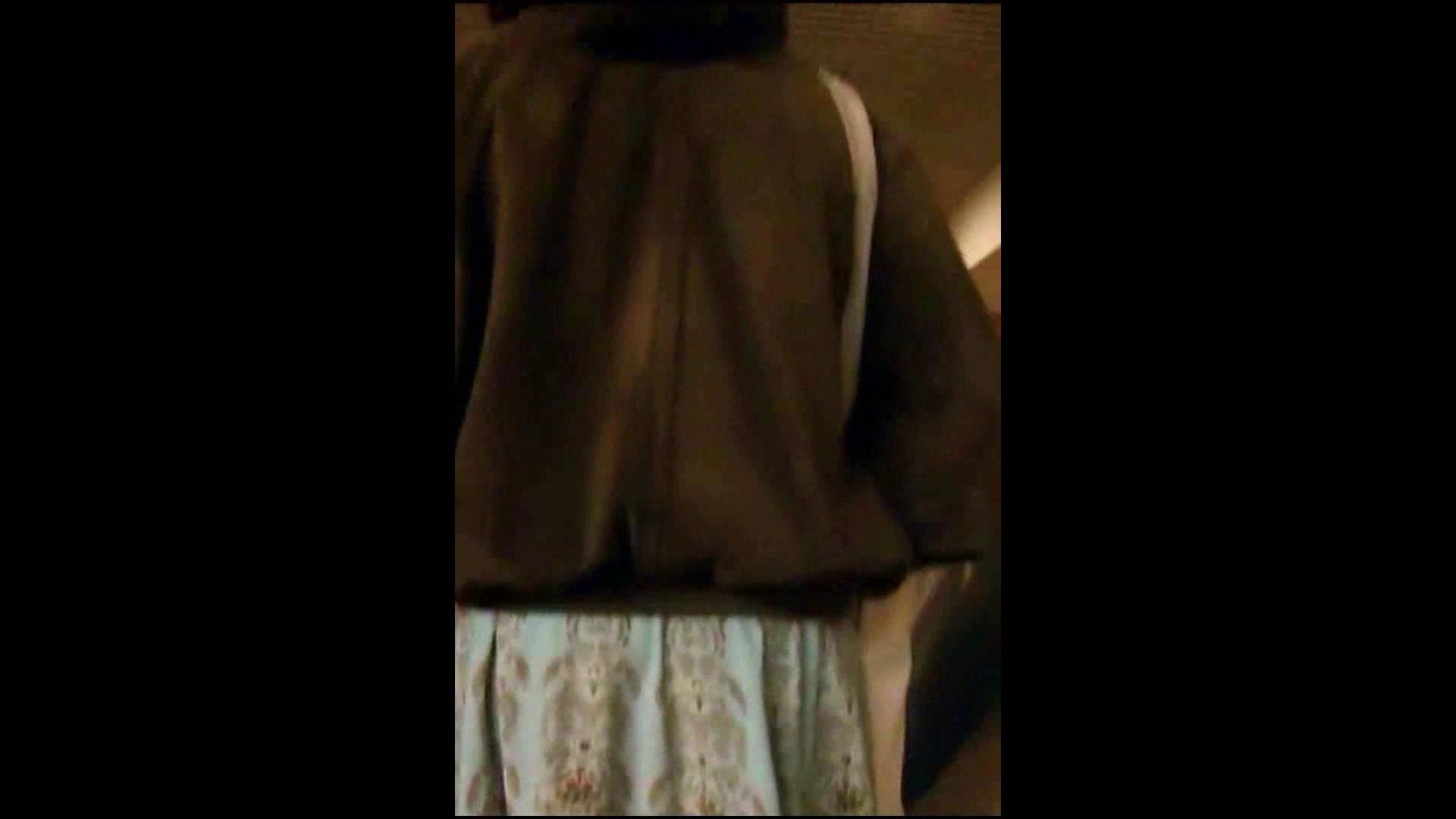 綺麗なモデルさんのスカート捲っちゃおう‼vol05 お姉さんのエロ動画  102PIX 54