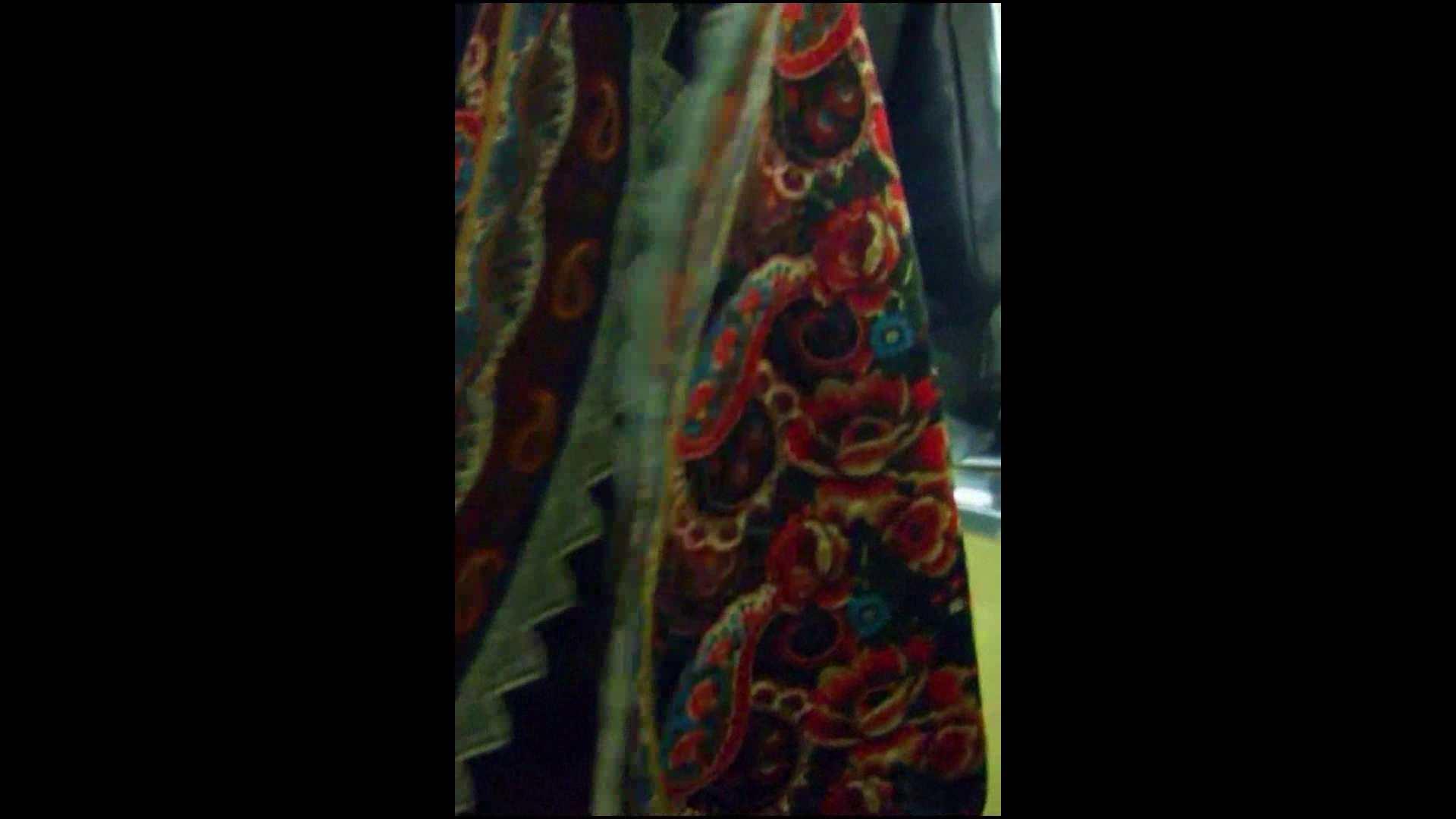 綺麗なモデルさんのスカート捲っちゃおう‼vol05 お姉さんのエロ動画  102PIX 66