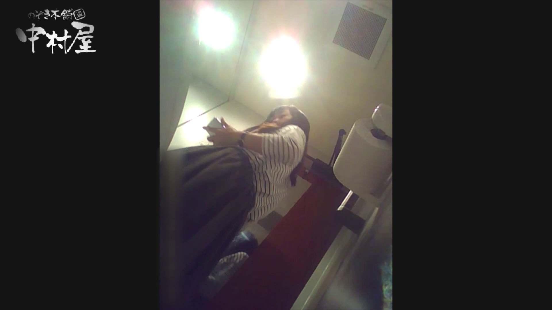 高画質トイレ盗撮vol.12 高画質 のぞき動画キャプチャ 90PIX 83