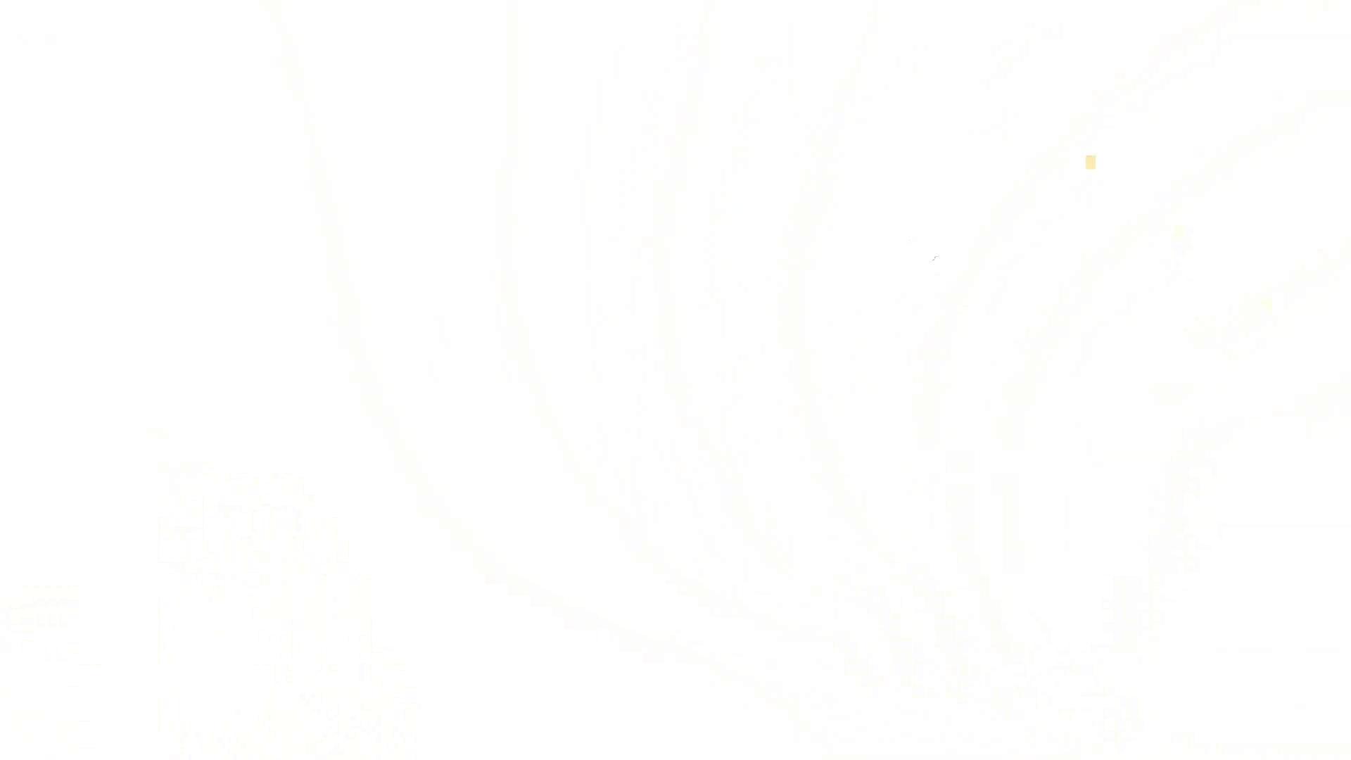 上級者の方専用 vol.02 おまんこ見放題   盗撮シリーズ  100PIX 19