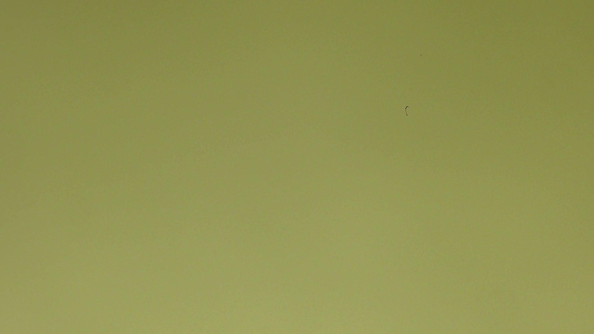 上級者の方専用 vol.03 盗撮シリーズ | おまんこ見放題  102PIX 23