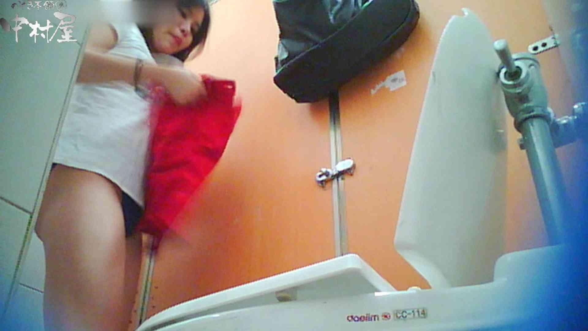 韓流トイレ盗撮vol.14 盗撮シリーズ 盗撮動画紹介 97PIX 77