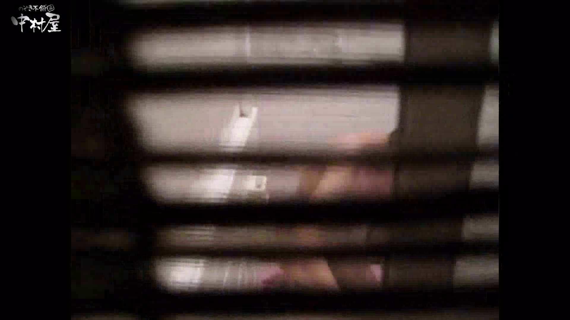 民家風呂専門盗撮師の超危険映像 vol.017 股間 性交動画流出 110PIX 23