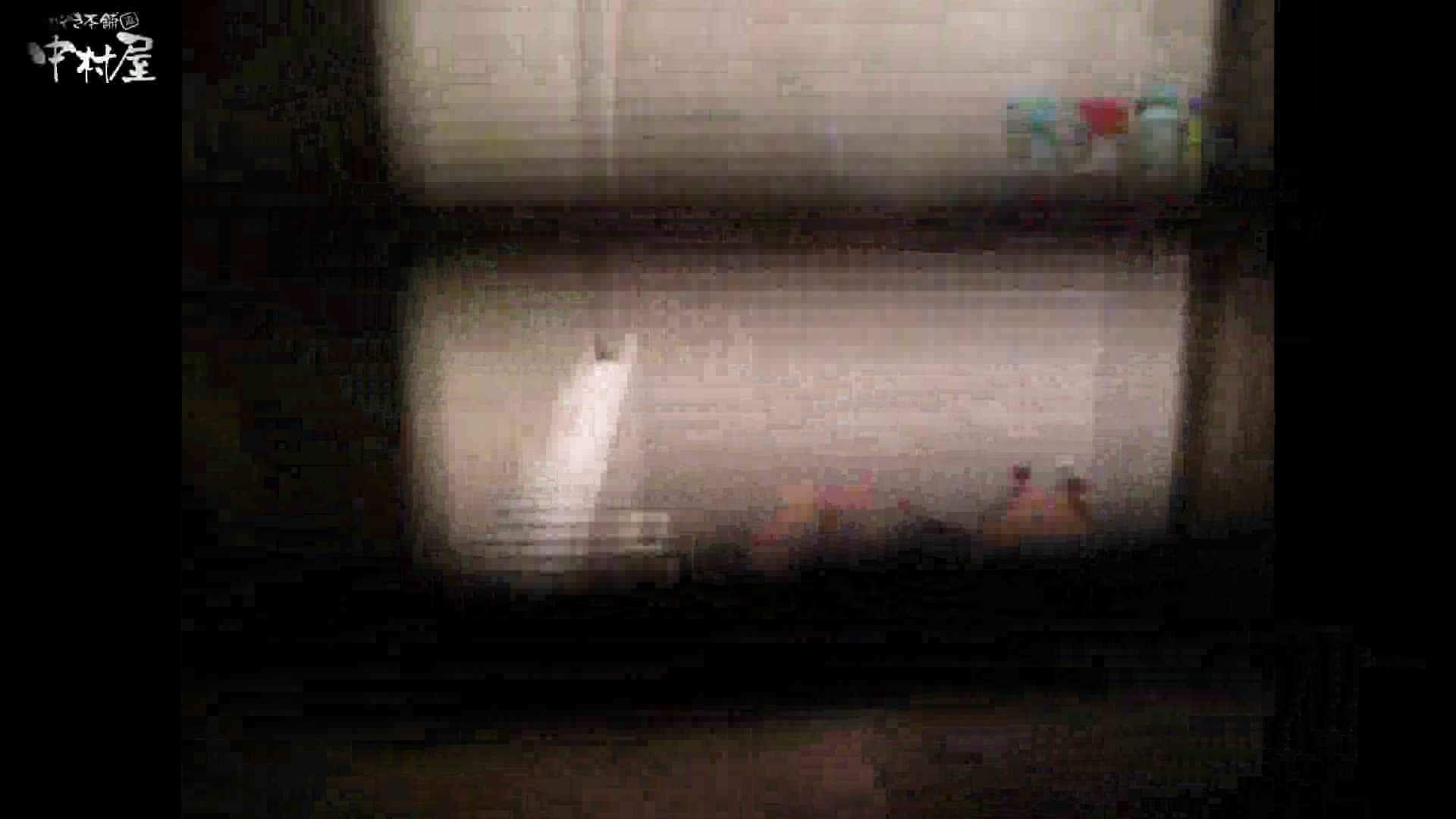 民家風呂専門盗撮師の超危険映像 vol.017 股間 性交動画流出 110PIX 93