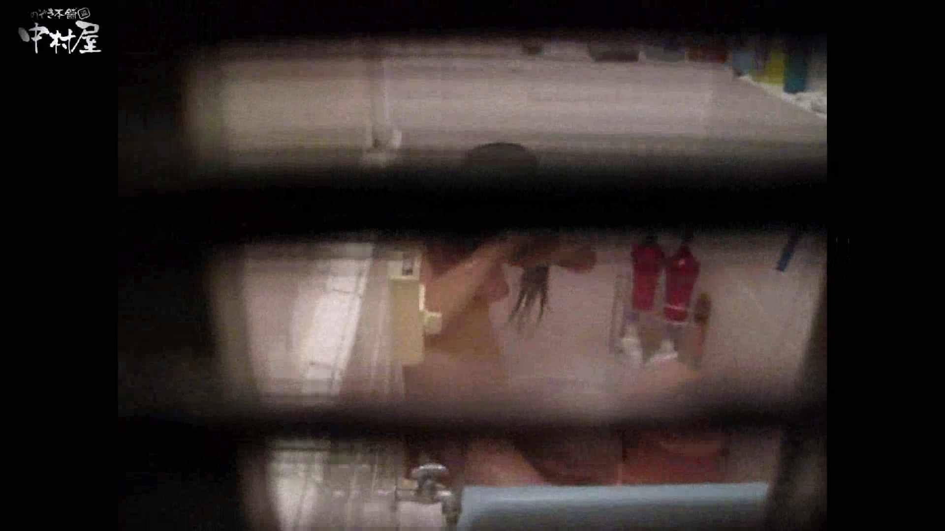 民家風呂専門盗撮師の超危険映像 vol.017 股間 性交動画流出 110PIX 103