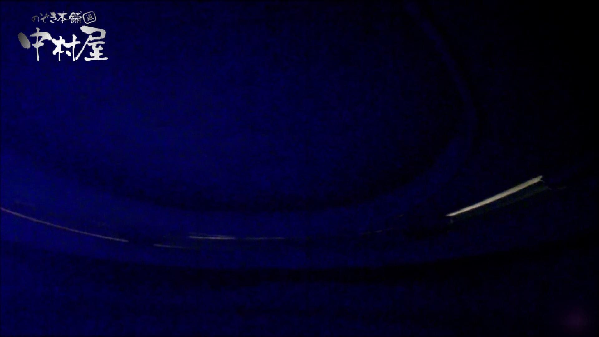 女子トイレ盗撮~某ファミレス編~vol.05 盗撮シリーズ アダルト動画キャプチャ 97PIX 90