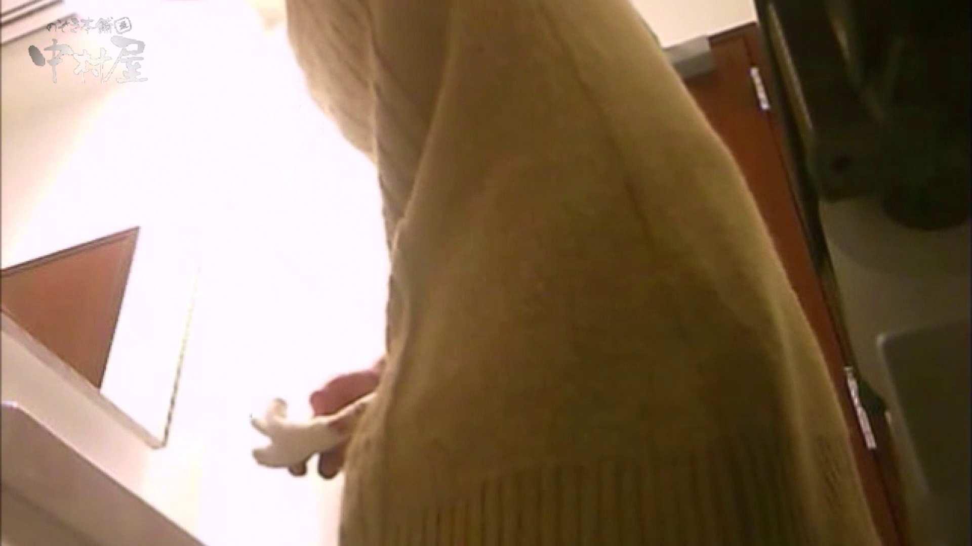 女子トイレ盗撮~某ファミレス編~vol.17 トイレ スケベ動画紹介 113PIX 2