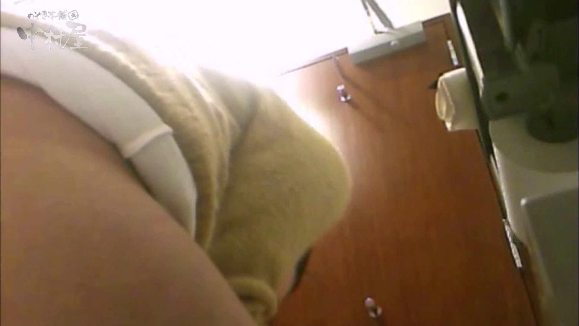 女子トイレ盗撮~某ファミレス編~vol.17 女子トイレ編 AV無料動画キャプチャ 113PIX 43