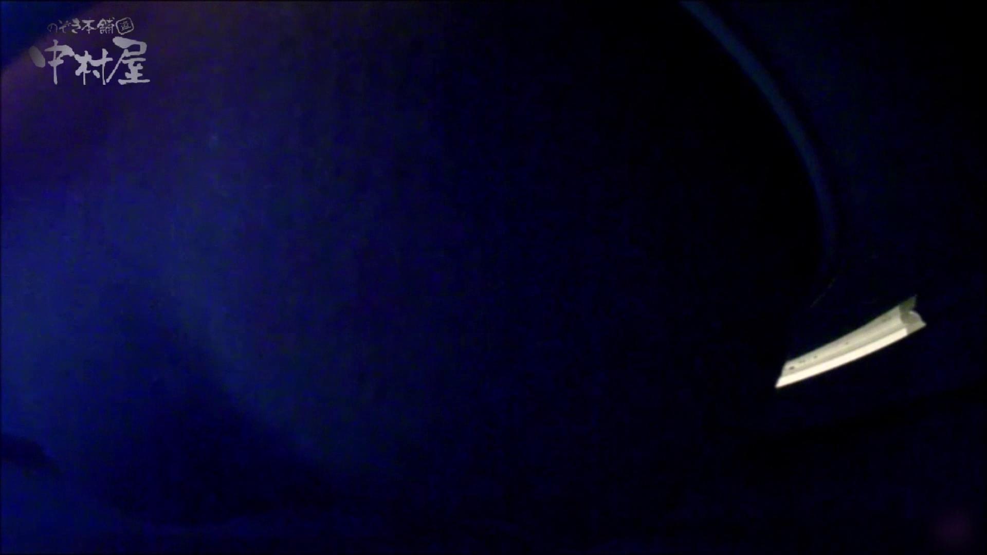 女子トイレ盗撮~某ファミレス編~vol.17 トイレ スケベ動画紹介 113PIX 106