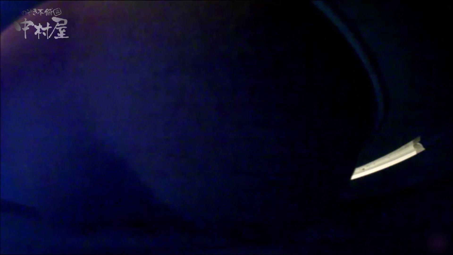 女子トイレ盗撮~某ファミレス編~vol.17 トイレ スケベ動画紹介 113PIX 110