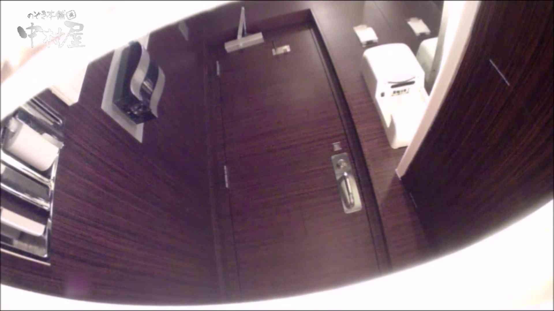 女子トイレ盗撮~某ファミレス編~vol.19 トイレ セックス画像 78PIX 27