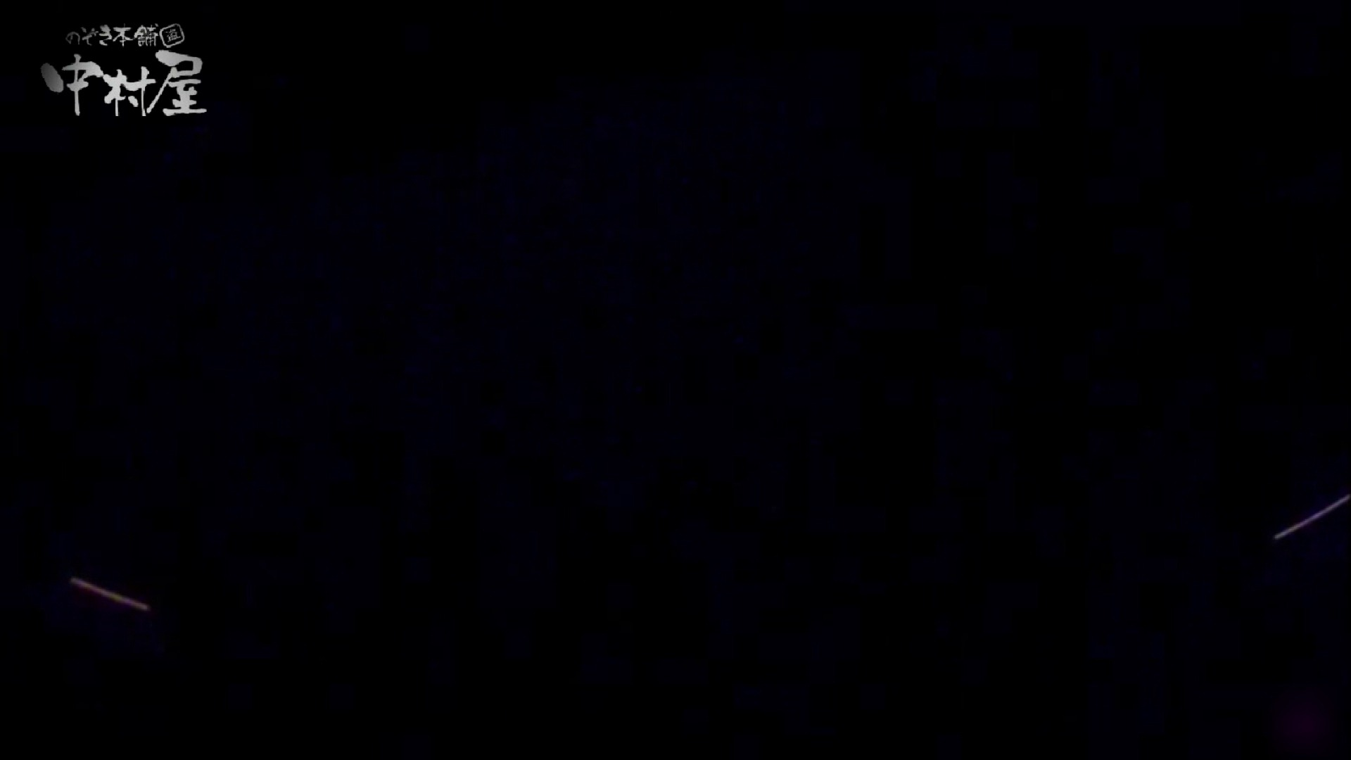 女子トイレ盗撮~某ファミレス編~vol.21 女子トイレ編 ぱこり動画紹介 105PIX 15