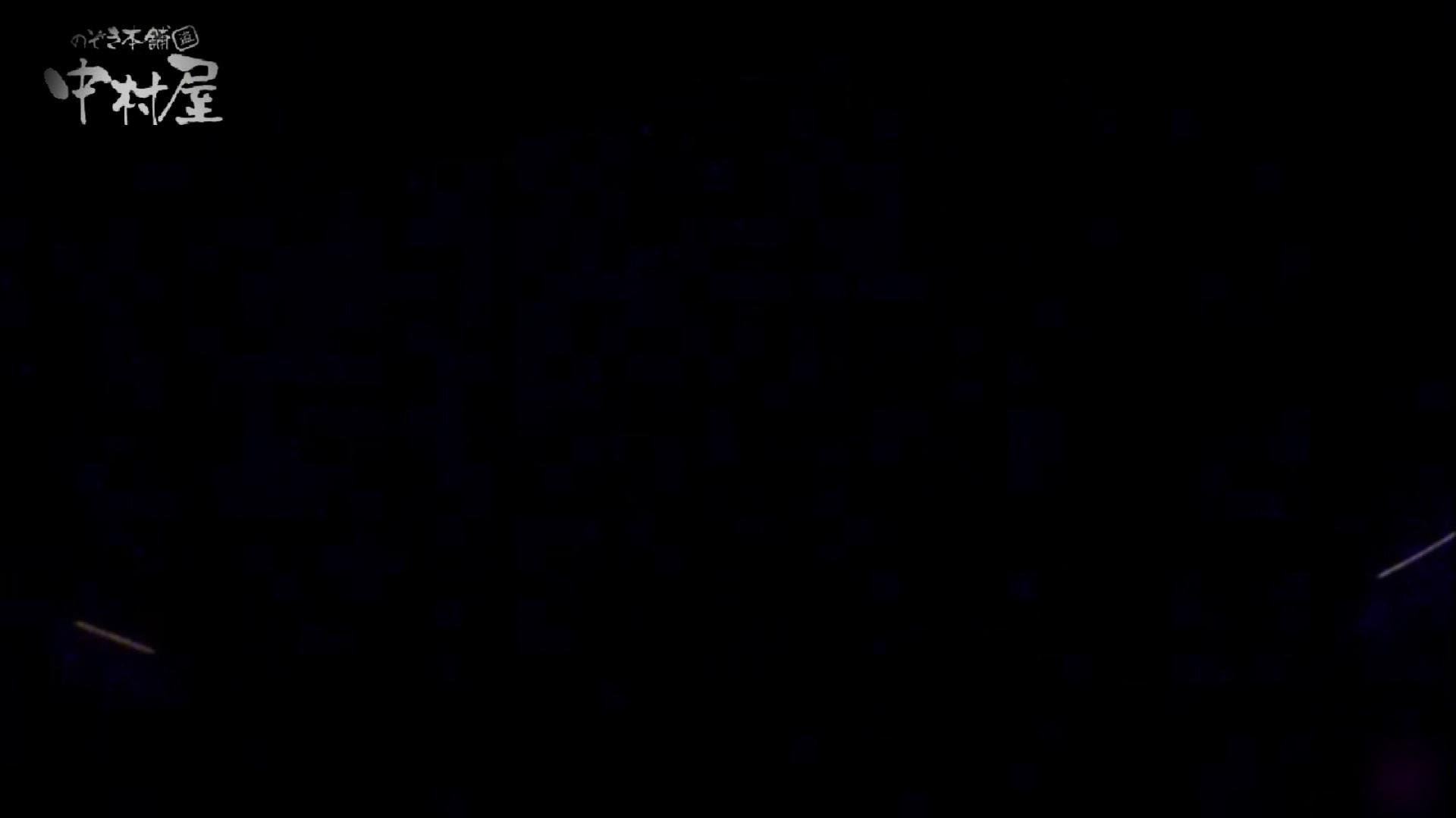 女子トイレ盗撮~某ファミレス編~vol.21 女子トイレ編 ぱこり動画紹介 105PIX 19