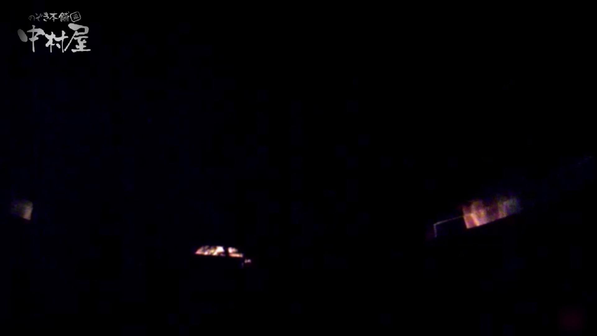 女子トイレ盗撮~某ファミレス編~vol.24 トイレ ワレメ動画紹介 89PIX 46