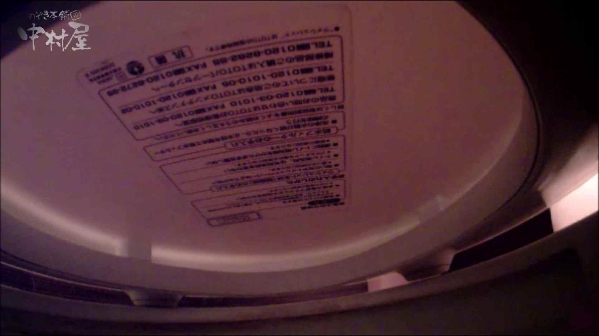 女子トイレ盗撮~某ファミレス編~vol.34 女子トイレ編 スケベ動画紹介 94PIX 39