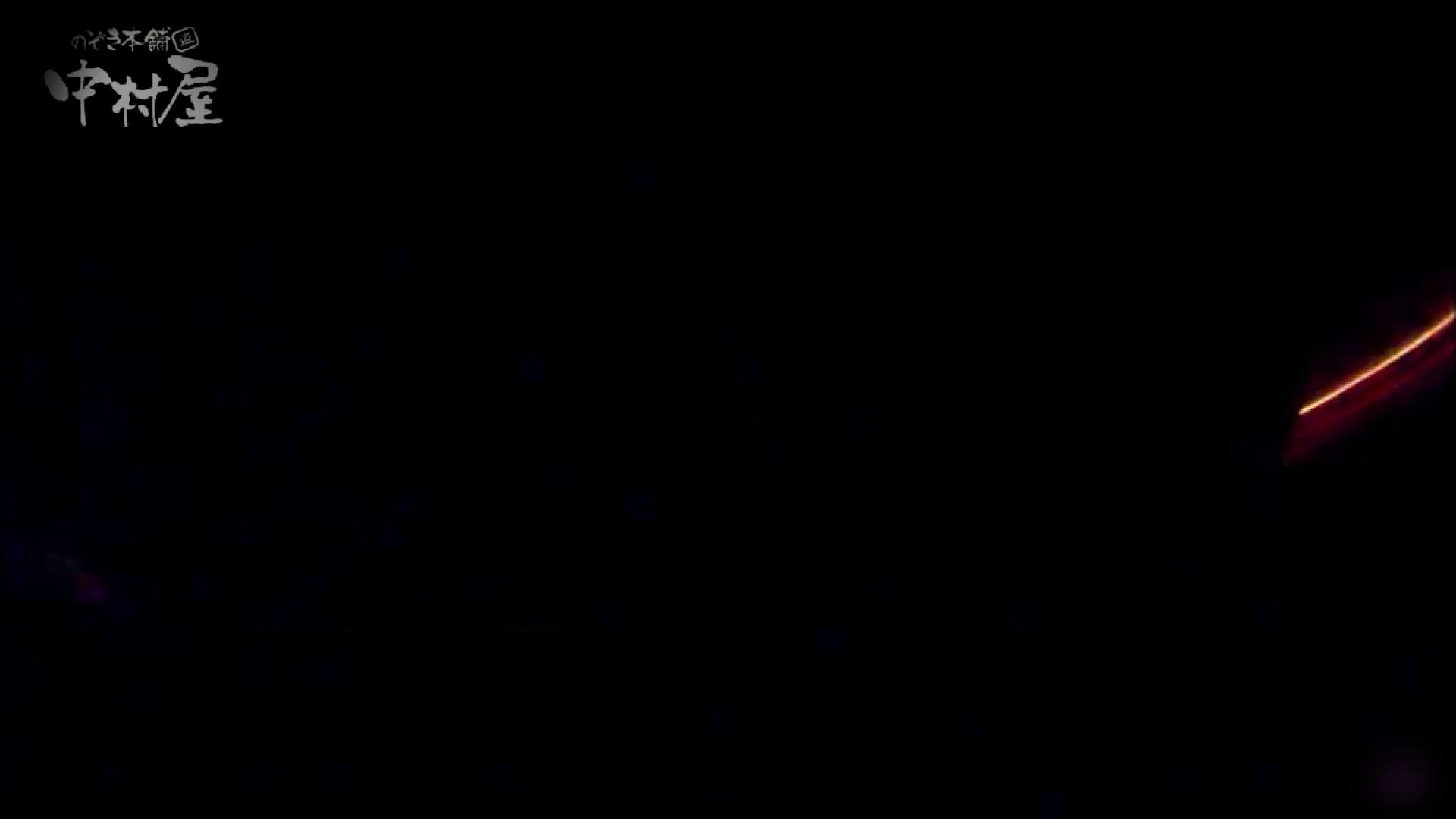 女子トイレ盗撮~某ファミレス編~vol.39 盗撮シリーズ エロ無料画像 83PIX 82