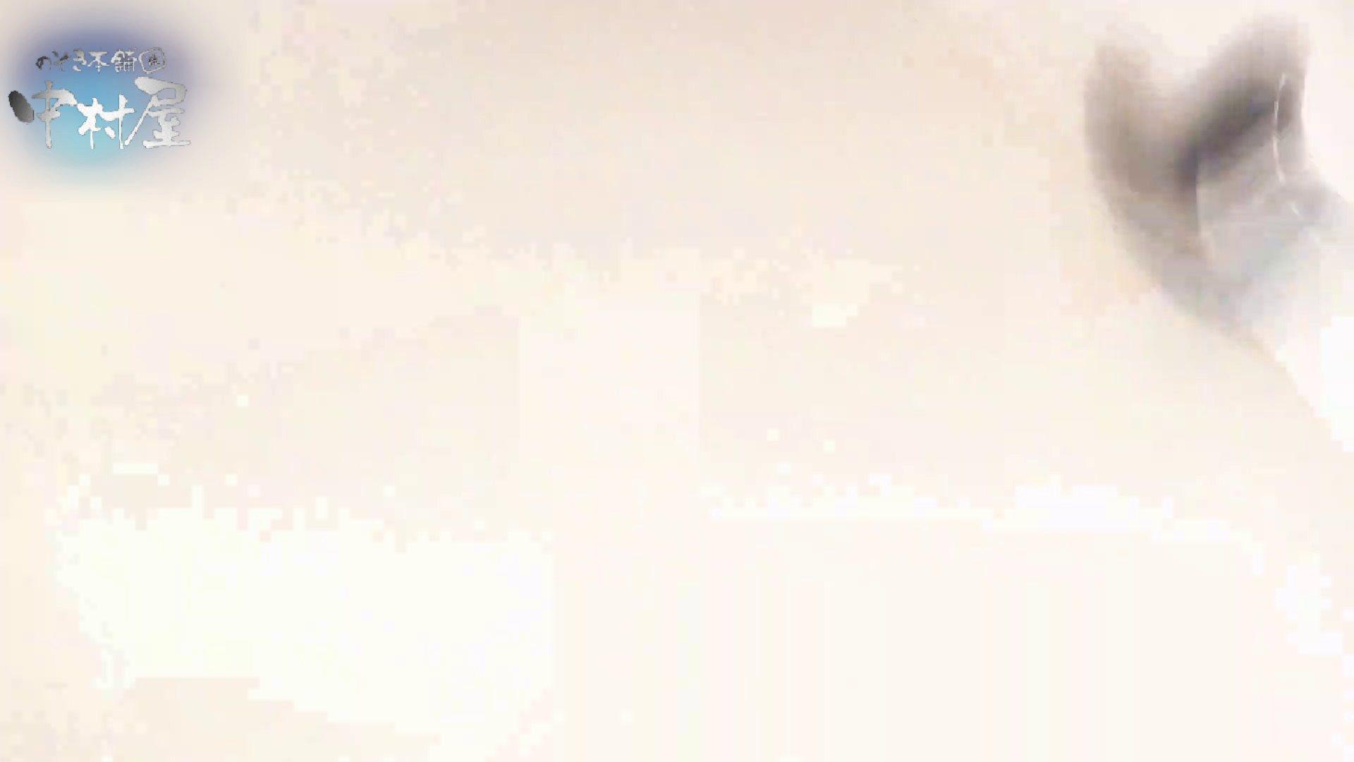 乙女集まる!ショッピングモール潜入撮vol.02 トイレ おまんこ動画流出 102PIX 33